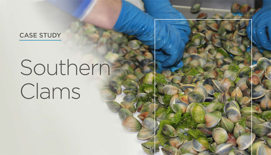 Southern Clams